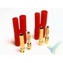 Conector banana 2mm, metalizado oro, macho y hembra, con carcasa aislante roja