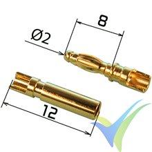 Conector banana 2mm corto, metalizado oro, 2 parejas macho y hembra